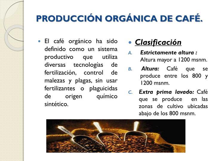 PRODUCCIÓN ORGÁNICA DE CAFÉ.