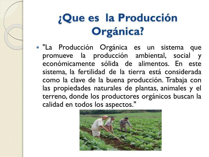 ¿Que es  la Producción Orgánica?