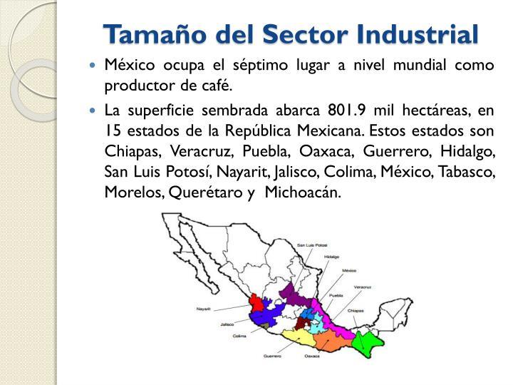 Tamaño del Sector Industrial
