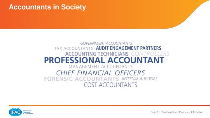 Accountants in society