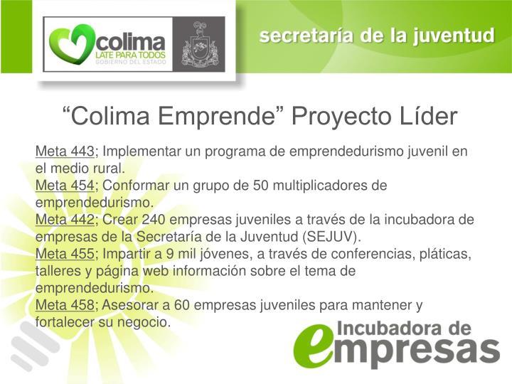 """Colima Emprende"" Proyecto Líder"