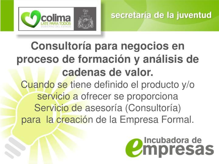 Consultoría para negocios en proceso de formación y análisis de cadenas de valor.