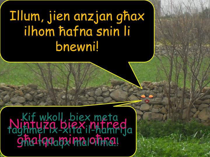 Illum, jien anzjan għax ilhom ħafna snin li bnewni!