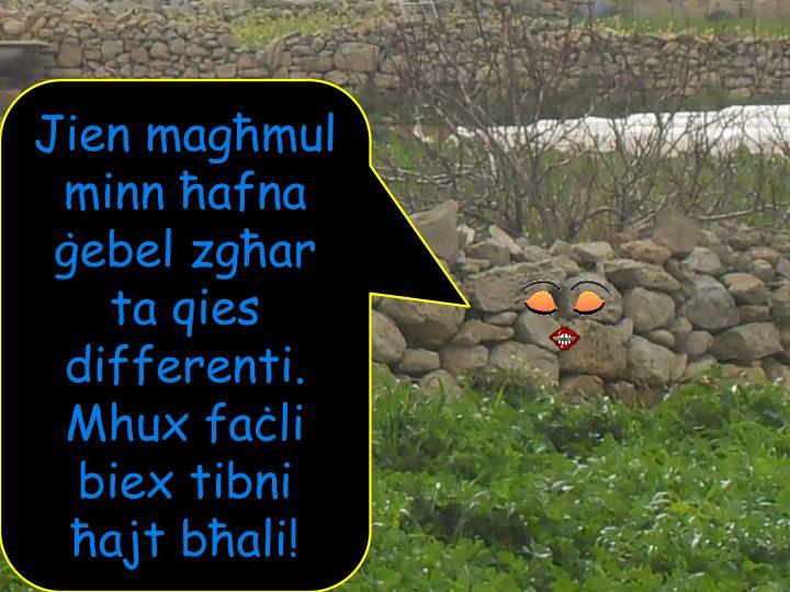Jien magħmul minn ħafna ġebel zgħar ta qies differenti.  Mhux faċli biex tibni ħajt bħali!