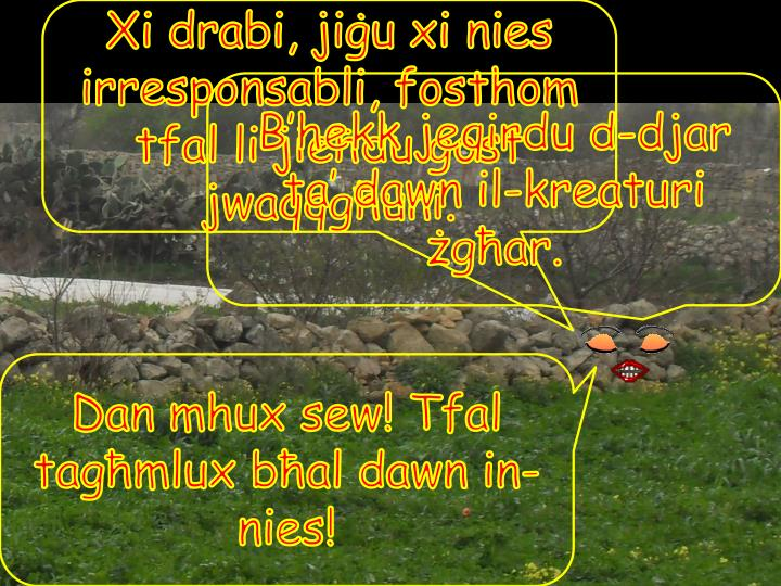 Xi drabi, jiġu xi nies irresponsabli, fosthom tfal li jieħdu gost jwaqqgħuni.