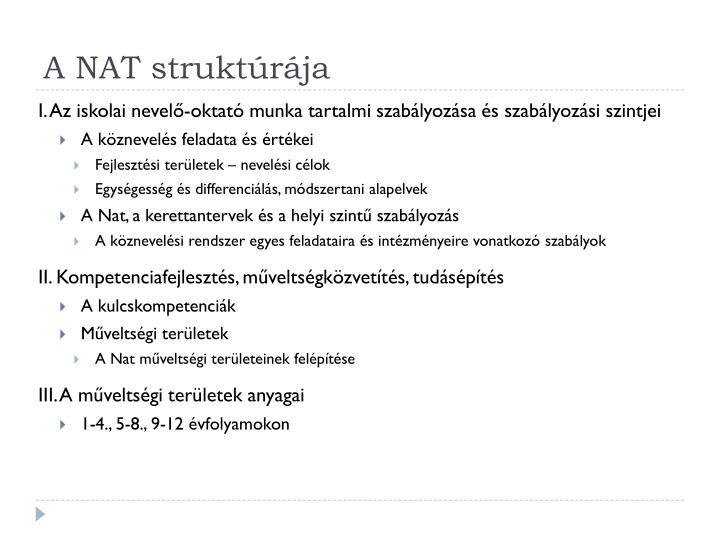 A NAT struktúrája