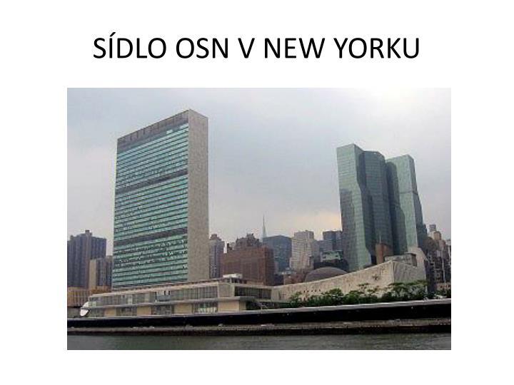 SDLO OSN V NEW YORKU