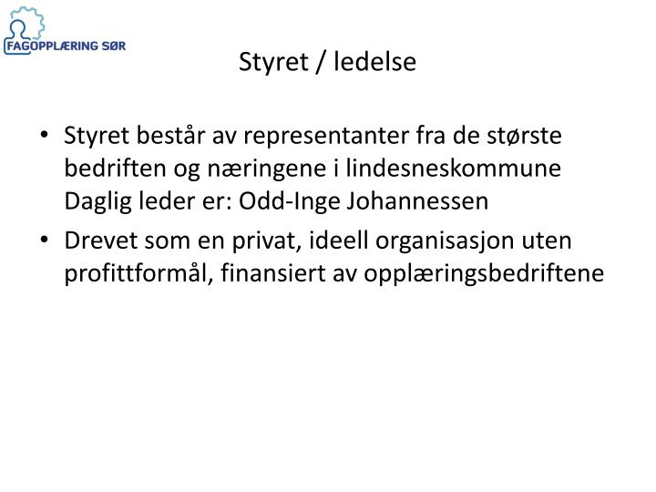 Styret / ledelse