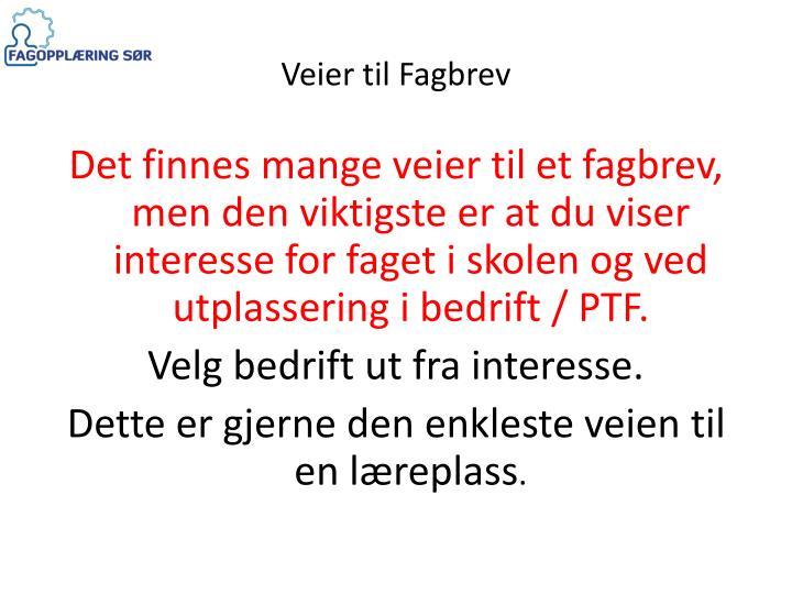 Veier til Fagbrev