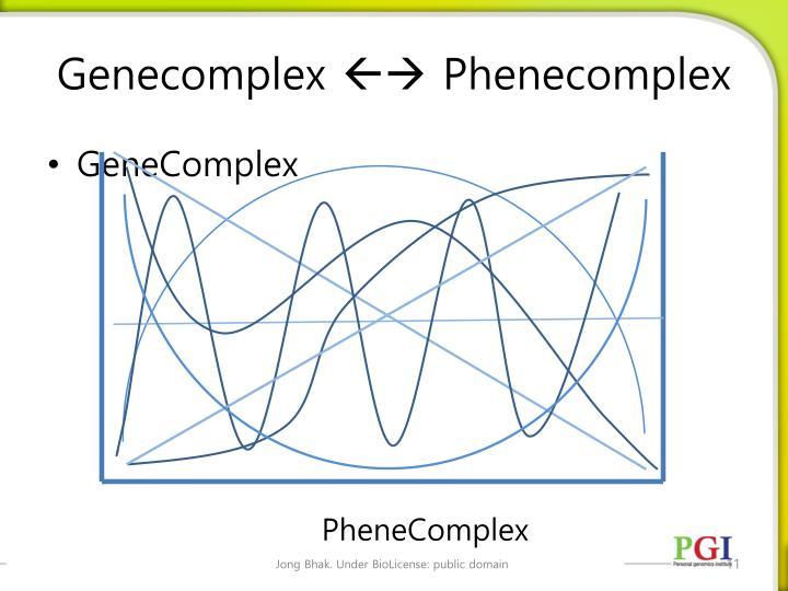 Genecomplex