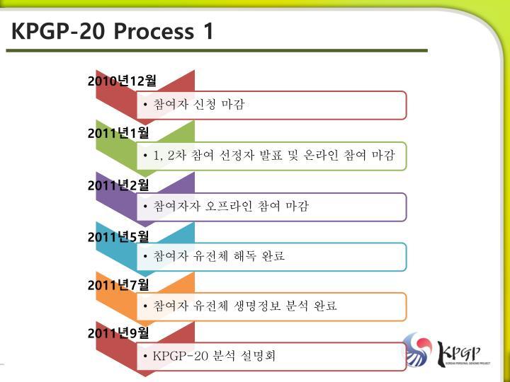 KPGP-20 Process 1