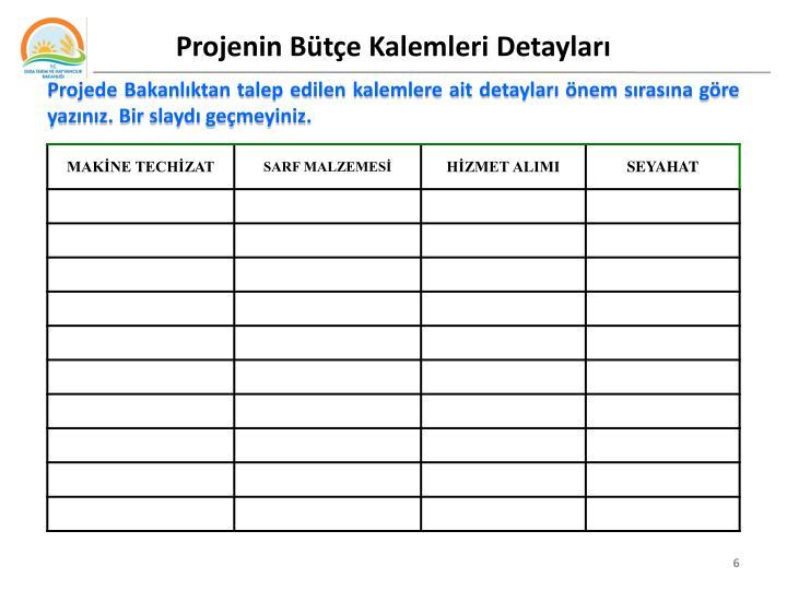 Projenin Bütçe Kalemleri Detayları