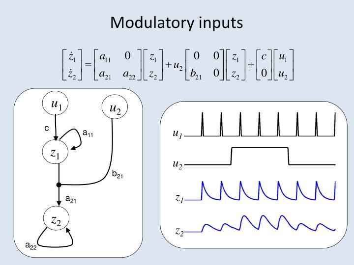 Modulatory inputs