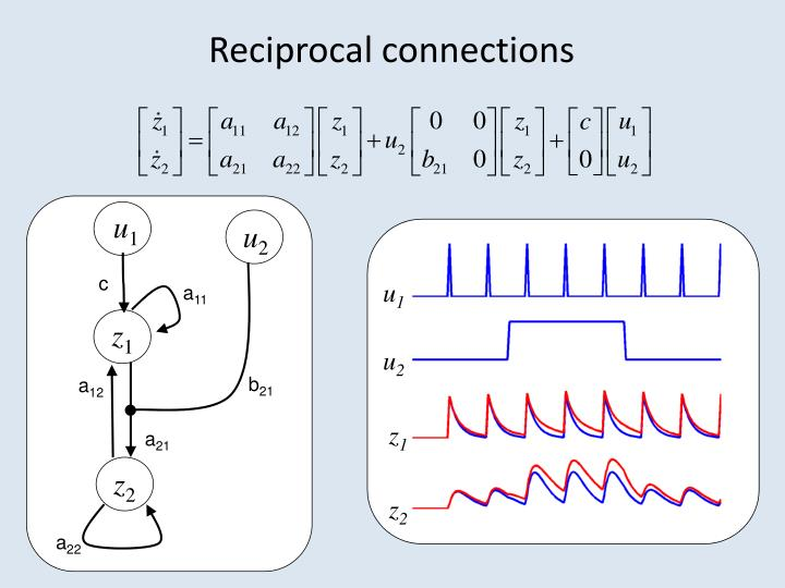 Reciprocal connections