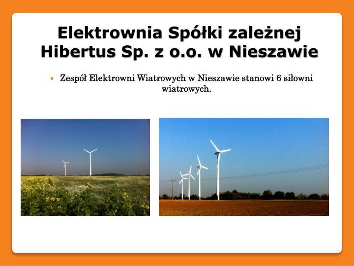 Elektrownia Spółki zależnej Hibertus Sp. z o.o. w Nieszawie