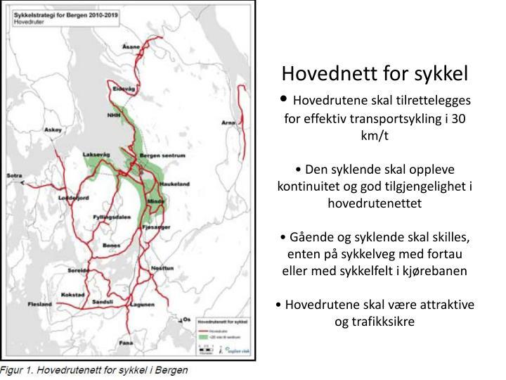 Hovednett for sykkel