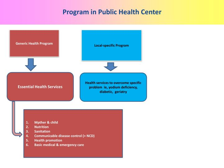 Program in Public Health Center