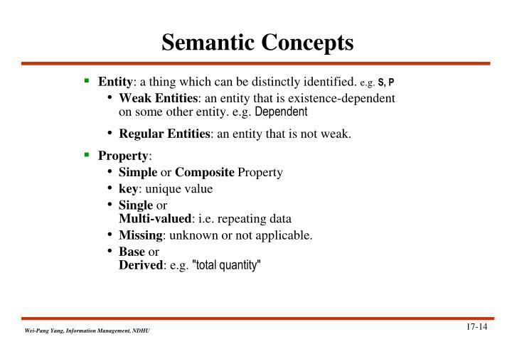 Semantic Concepts