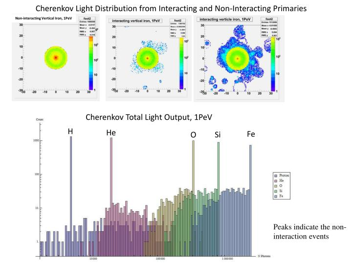 Cherenkov Light Distribution from Interacting and Non-Interacting Primaries