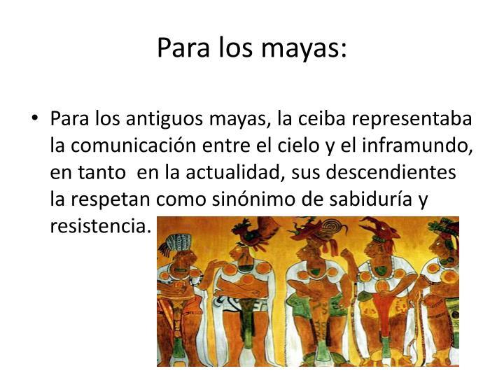 Para los mayas: