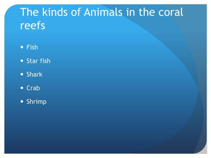 The kinds of Animals in the coral reefs