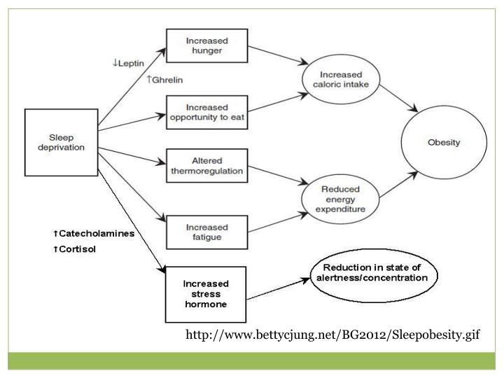 http://www.bettycjung.net/BG2012/Sleepobesity.gif