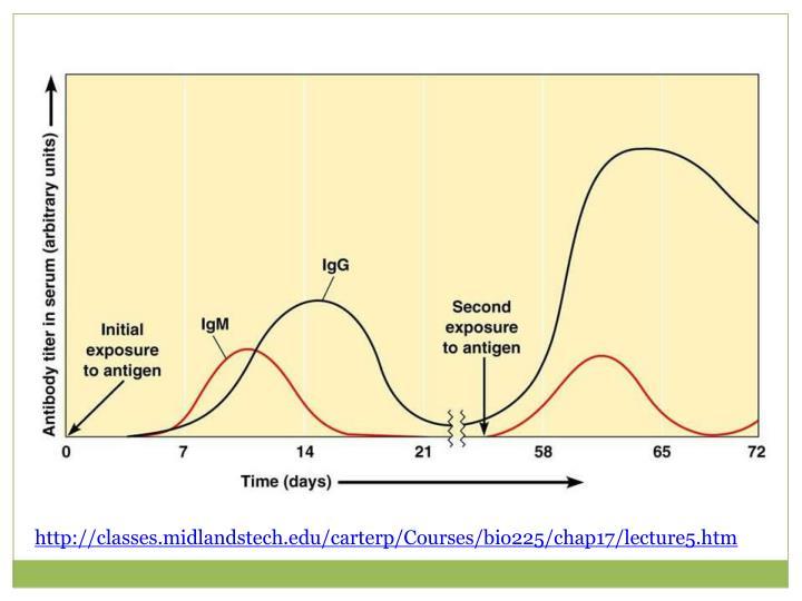 http://classes.midlandstech.edu/carterp/Courses/bio225/chap17/lecture5.htm