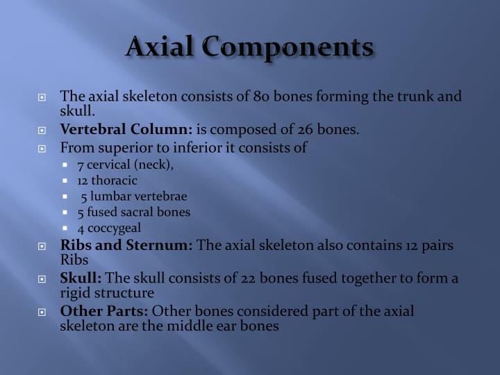 Axial Components