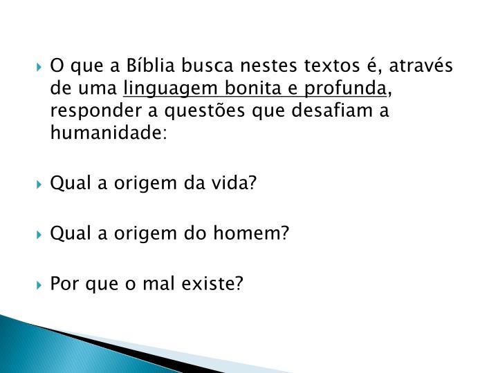 O que a Bíblia busca nestes textos é, através de uma
