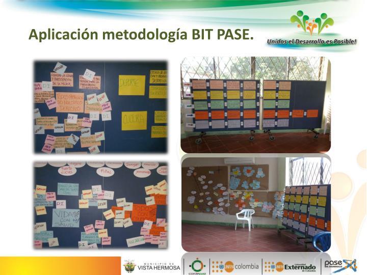 Aplicación metodología BIT PASE.
