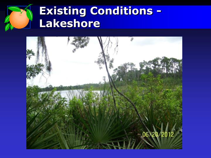 Existing Conditions - Lakeshore
