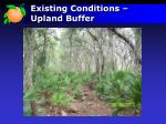 existing conditions upland buffer