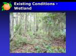 existing conditions wetland
