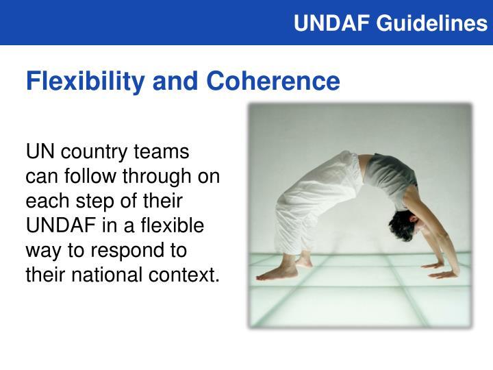 UNDAF Guidelines