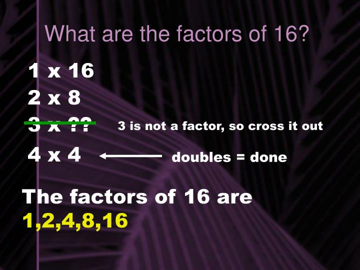 What are the factors of 16?
