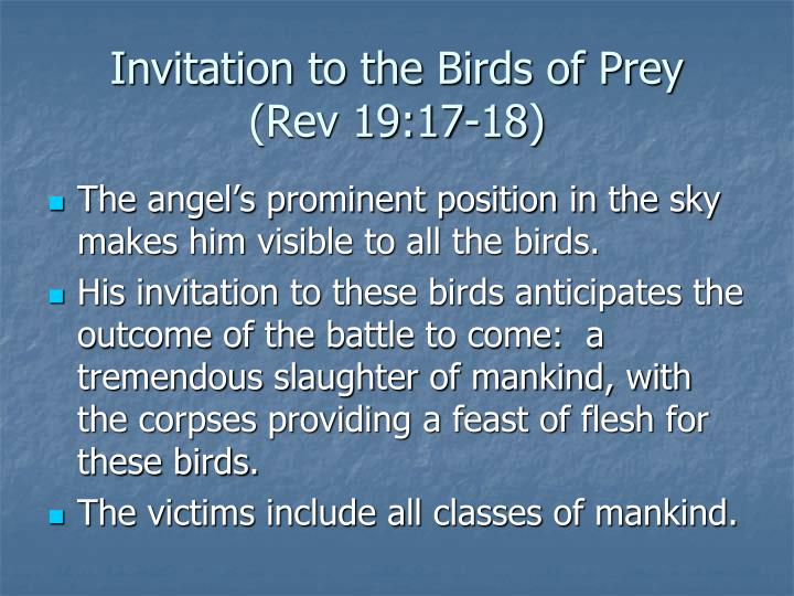 Invitation to the Birds of Prey