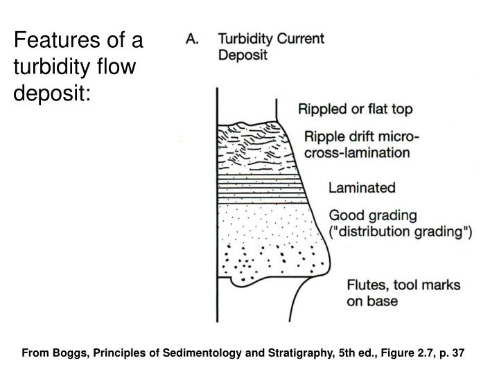 Features of a turbidity flow deposit: