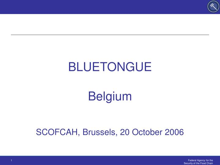 Bluetongue belgium scofcah brussels 20 october 2006