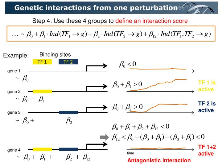 Genetic interactions from one perturbation