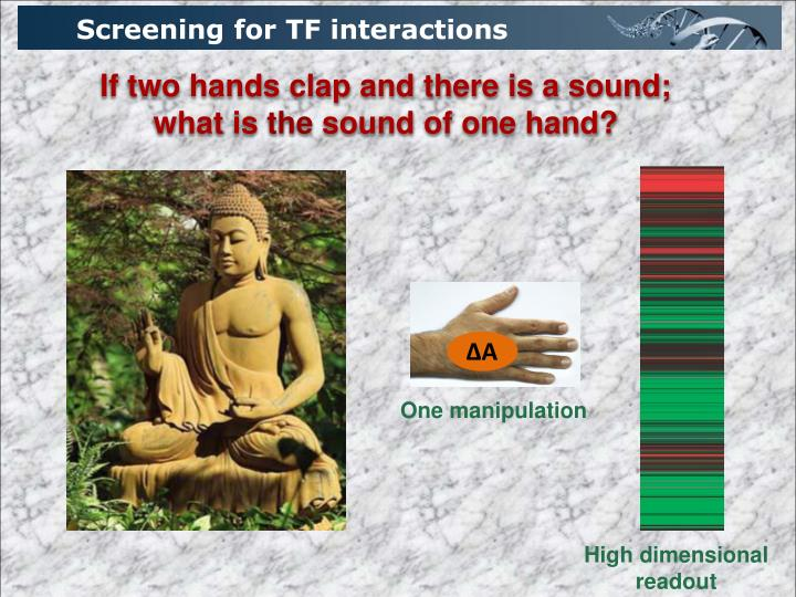 Screening for TF interactions