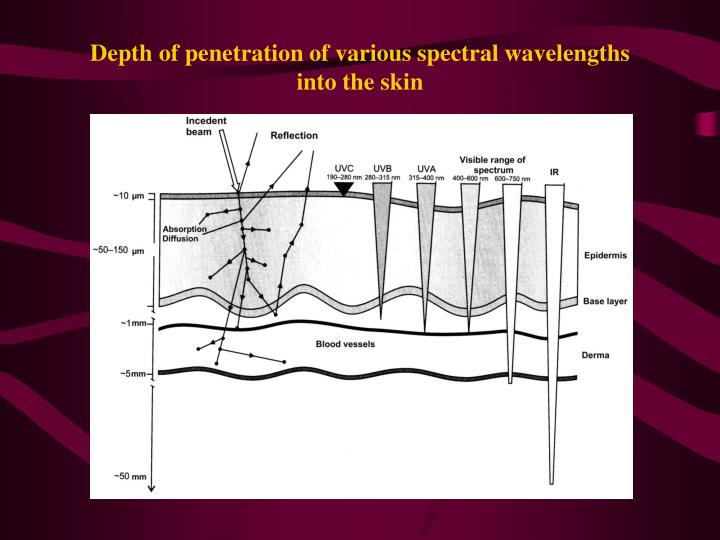 Depth of penetration of various spectral wavelengths