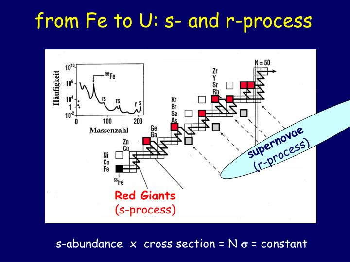 from Fe to U: s- and r-process
