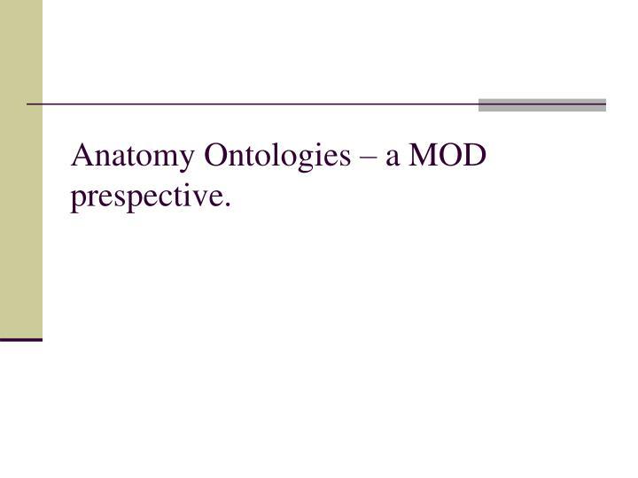Anatomy Ontologies – a MOD prespective.