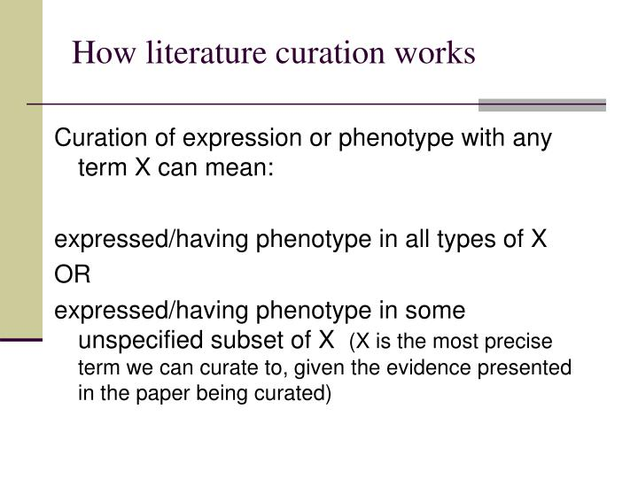 How literature curation works