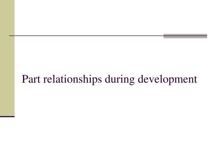 Part relationships during development