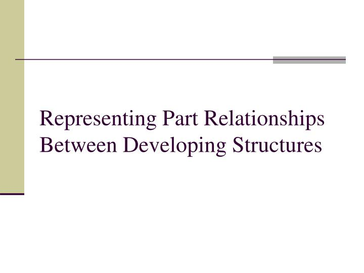 Representing Part Relationships Between Developing Structures