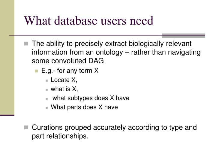 What database users need