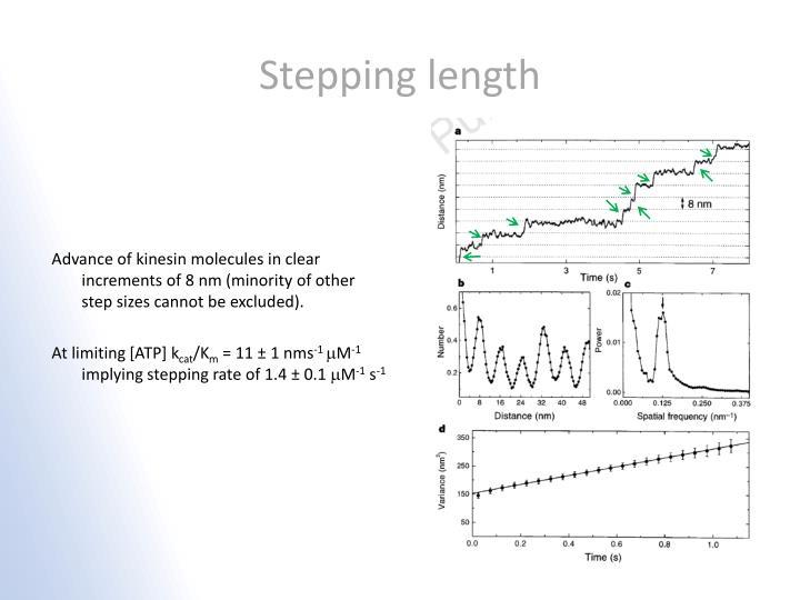Stepping length