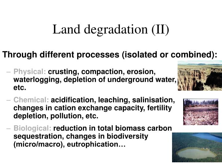 Land degradation (II)