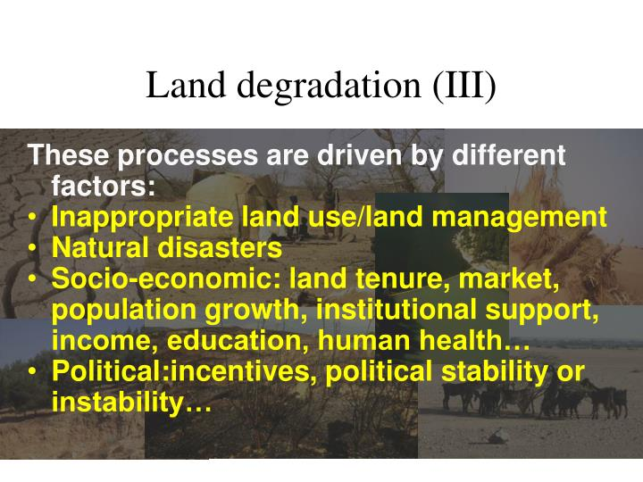 Land degradation (III)